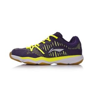 Li-Ning 2017 New Double Jacquard Men's Badminton Training Shoes - Green/Purple [AYTM105-4]